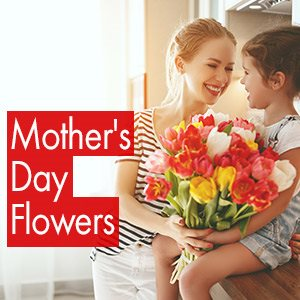 Flower Messages for International Women's Day - LolaFlora